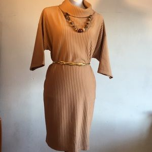 Ribbed Cowl Neck Comfortable Dress.